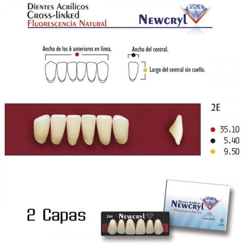 DIENTES NEWCRYL-VITA 2E LO A2