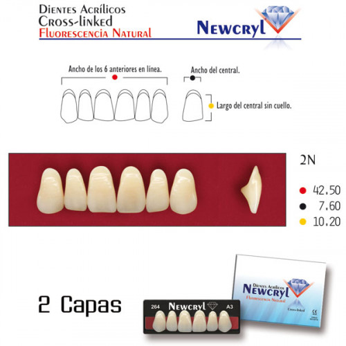 DIENTES NEWCRYL-VITA 2N UP A3