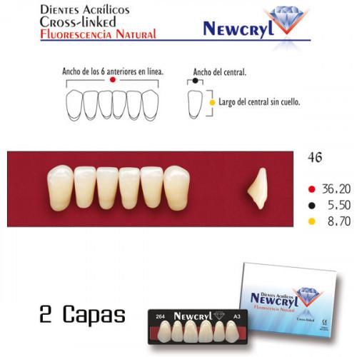 DIENTES NEWCRYL-VITA 46 LO A3.5