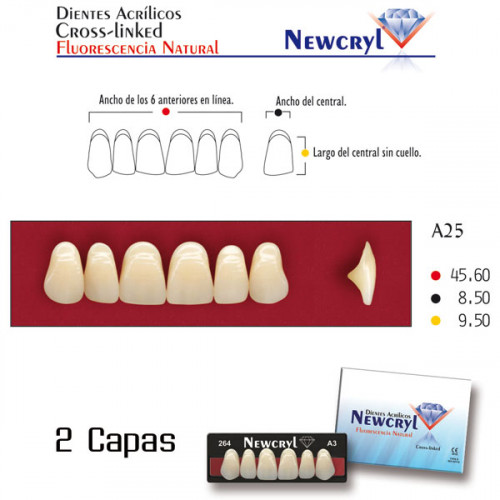 DIENTES NEWCRYL-VITA A25 UP A3