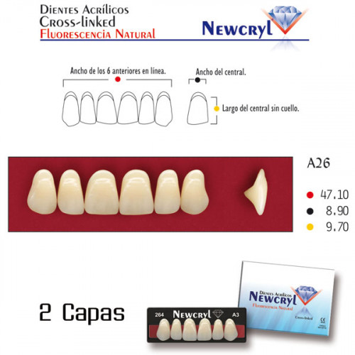DIENTES NEWCRYL-VITA A26 UP A3.5