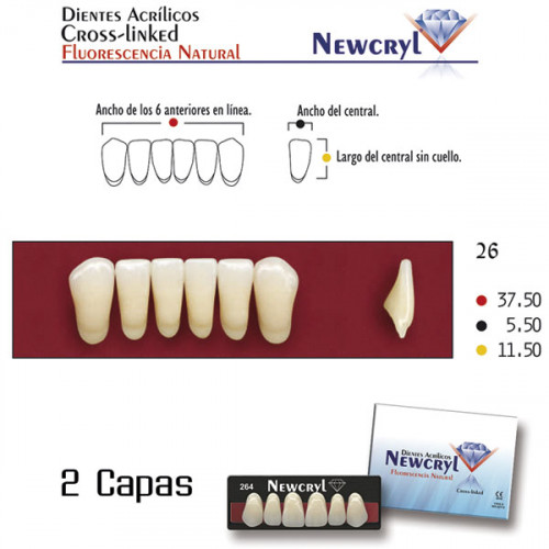 DIENTES NEWCRYL-VITA 26 LO B4
