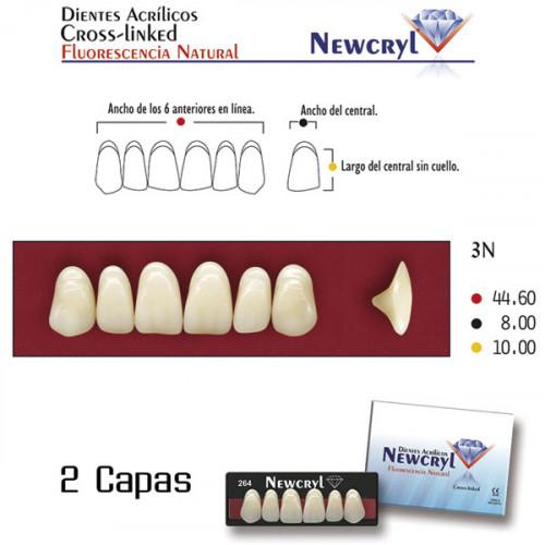 DIENTES NEWCRYL-VITA 3N UP B3