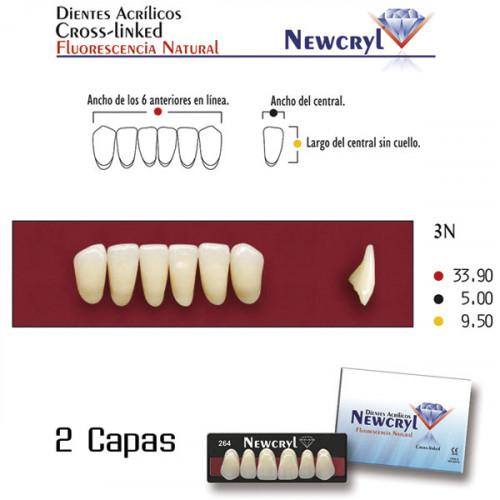 DIENTES NEWCRYL-VITA 3N LO B2