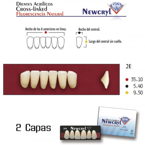 DIENTES NEWCRYL-VITA 2E LO B2