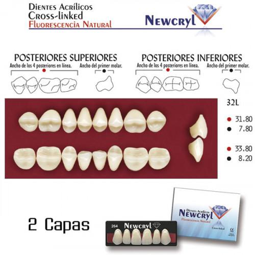 DIENTES NEWCRYL-VITA 32L UP B4